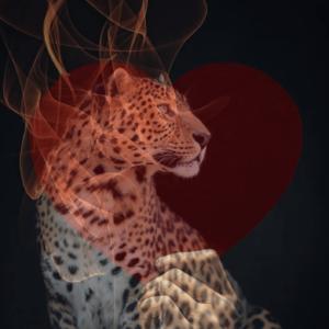 Liebeszauber, Magische Rituale